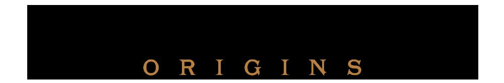 Logo du Chevalier Bourré Origins